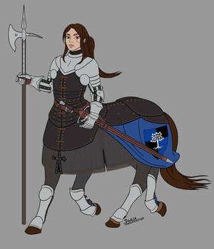 Milo D'armine - Heraldry and Arms