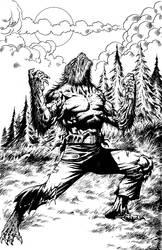 Werewolf Cover by Jadool
