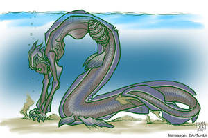 Frilled Shark Mermaid
