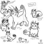 Meowth sketchdump
