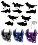 Corvus Trials