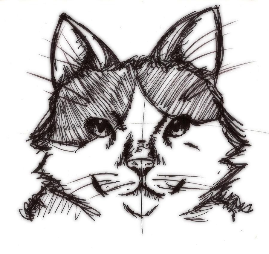 Sharpie Kitty by Twinxabella