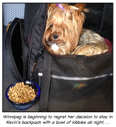 Winnipeg is beginning to regret her decision. . .