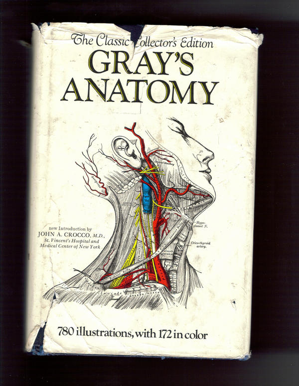Gray's Anatomy Textbook by Nathaniel-Del-Valle on DeviantArt