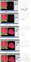 Rose Creation Tutorial