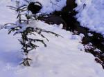 Little Lake In Snow 3