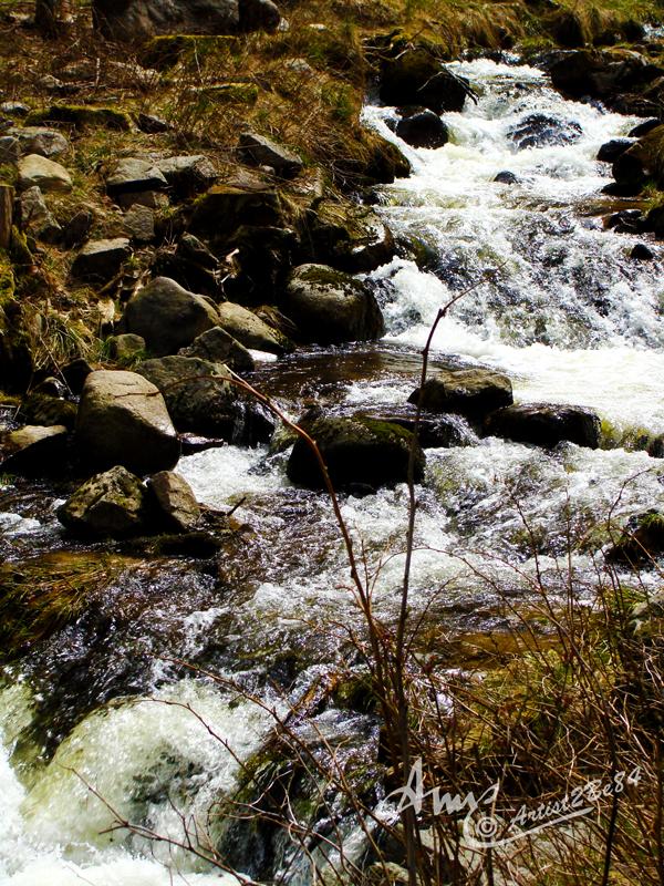 Schluchsee Wasserfall by Artist2Be84