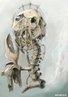 human transformation by mrfineeye