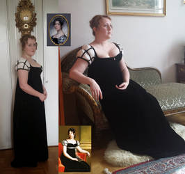 Svenska Nationella Drakten (Swedish court gown)