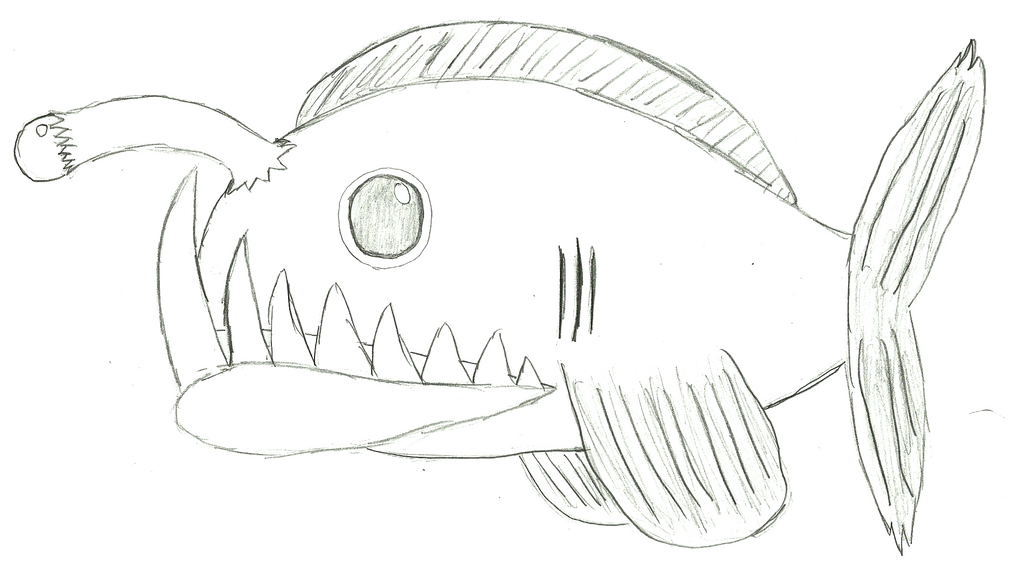 how to draw a fish step by step easy