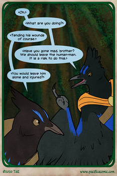 Pacifica: Birds of a Feather, Page 2