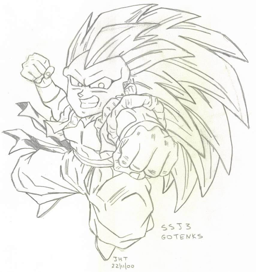 Goku Super Saiyan Level 3. Goku Super Saiyan Level 4.