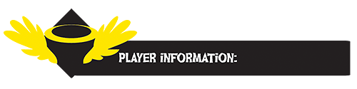 Banner Playerinformation by Zoomutt