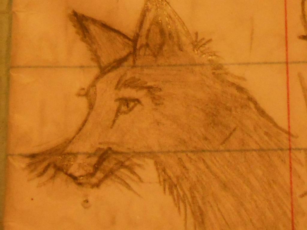 fox by swiftcross