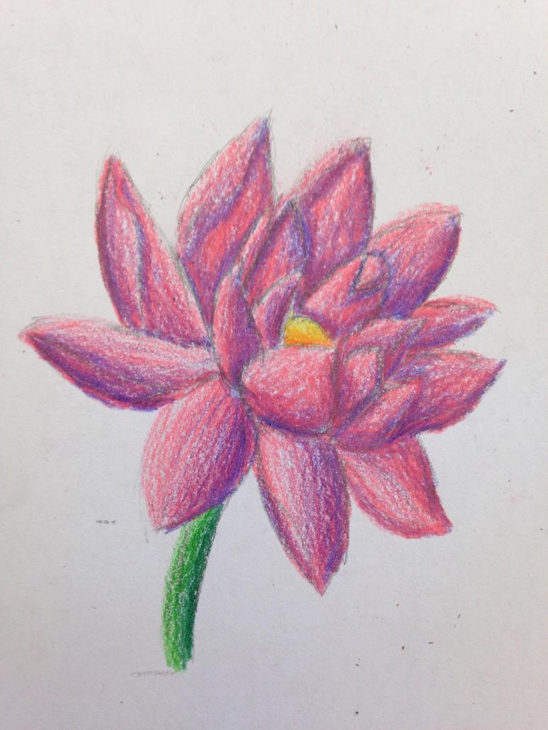 Flower by swiftcross