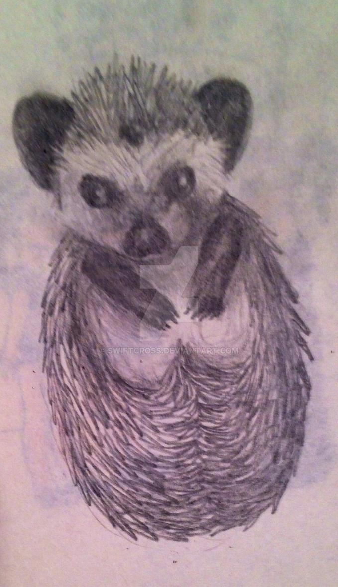 Hedgehog by swiftcross