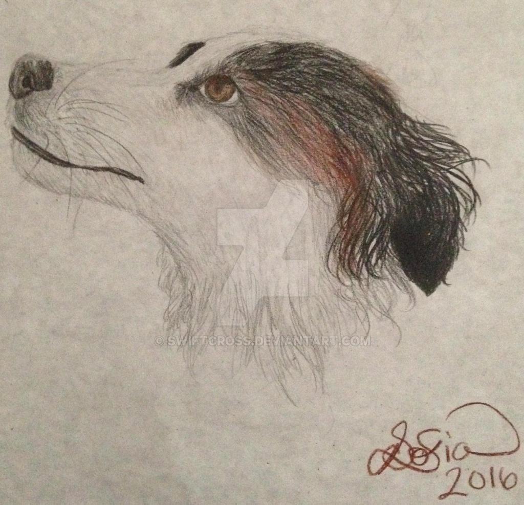 Roxy by swiftcross
