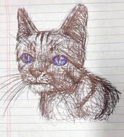 Cat by swiftcross