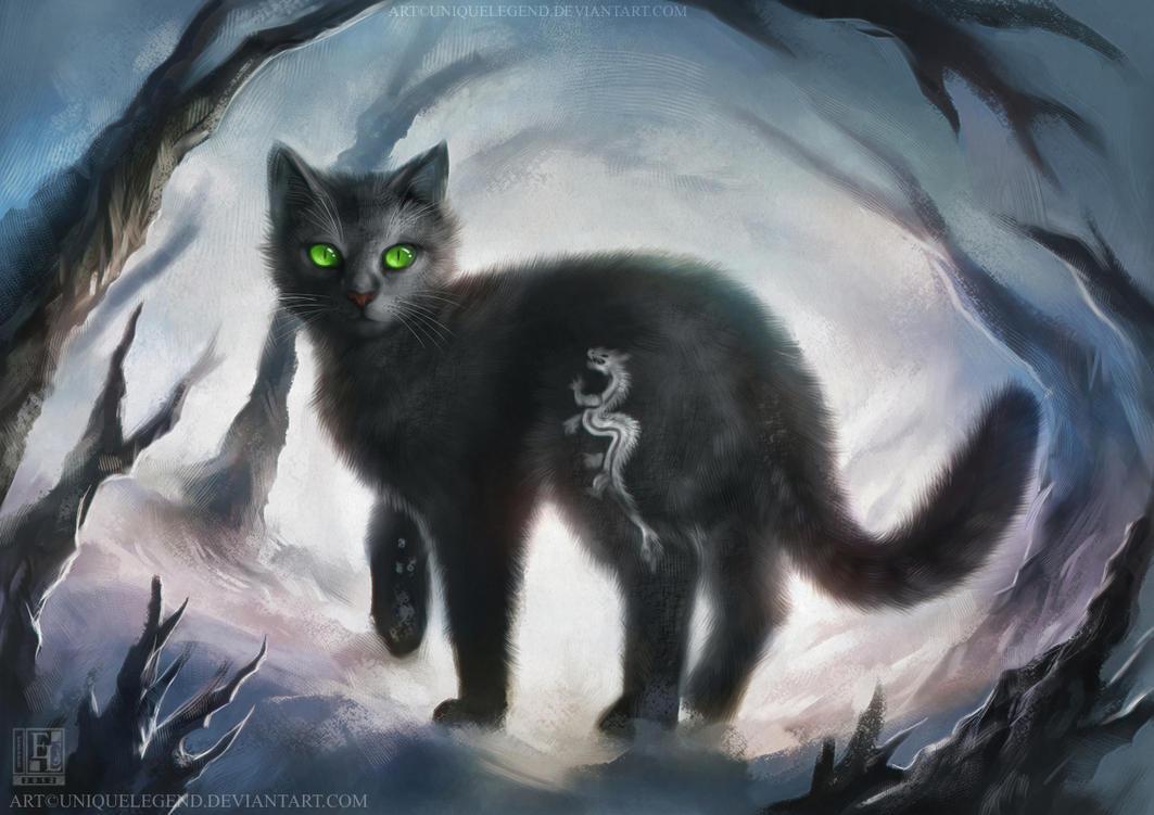 Image Result For Cat Wallpaper For Tableta