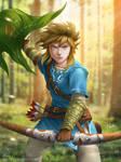 Zelda Wii U: Link