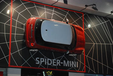 Spider Car by twinsforever