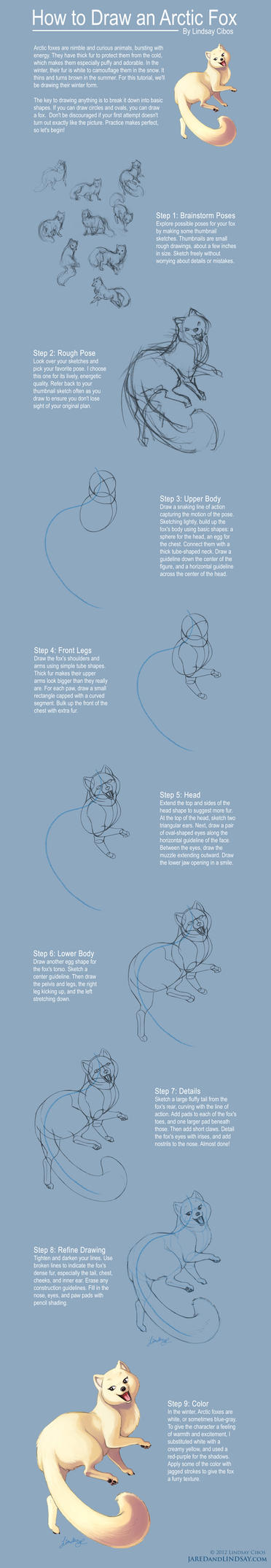 How to Draw an Arctic Fox by LCibos