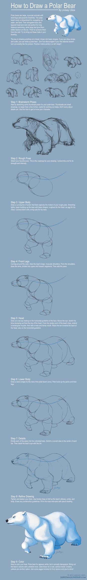 How to Draw a Polar Bear by LCibos