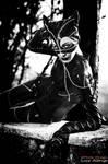 Catwoman-Meowww