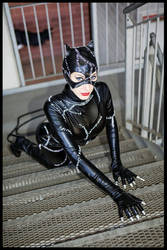 Catwoman: sweet kitty