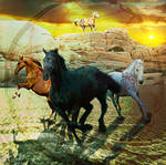 Black Stallion-Spirit of the West by amethystmoonsong