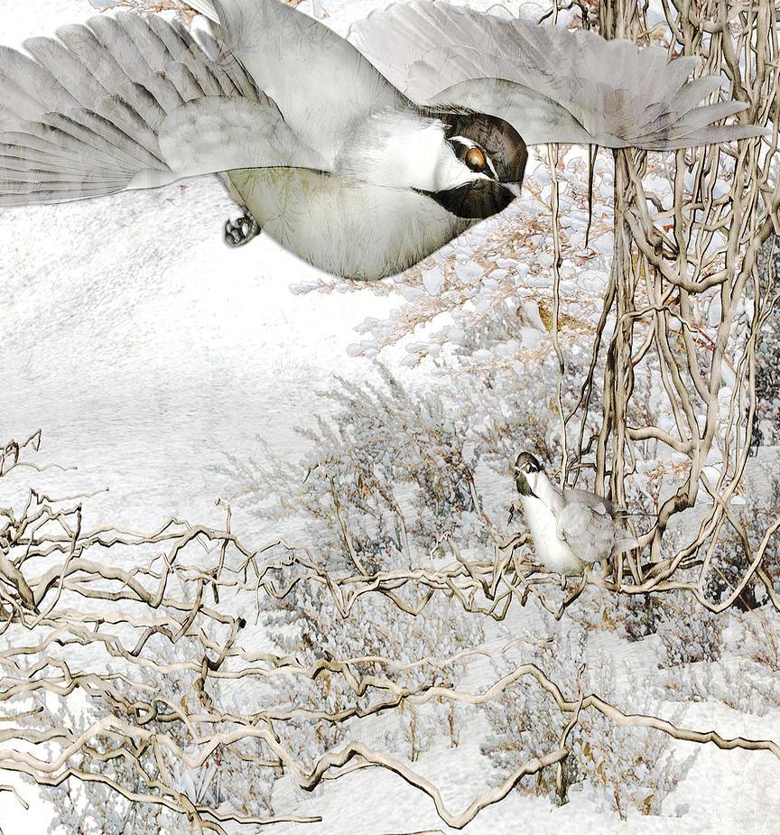 Winter Elf Detail by amethystmoonsong