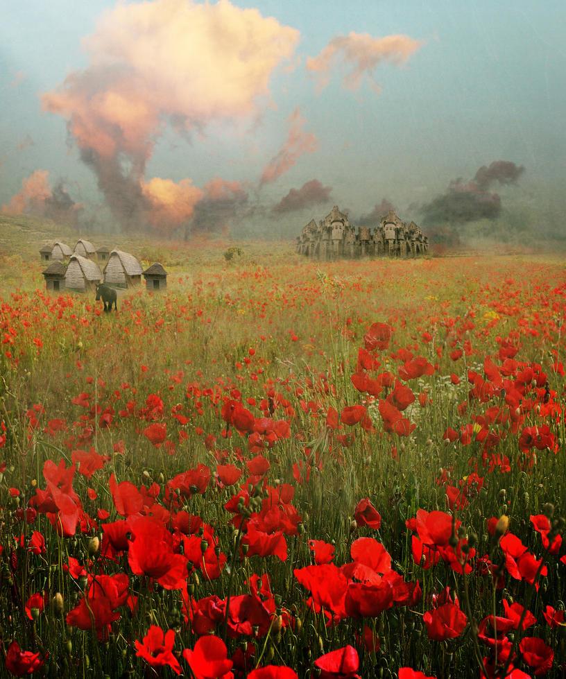 The Poppies of Flanders by amethystmoonsong