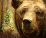 A Very Bear-y Christmas