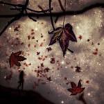 tribute to autumn