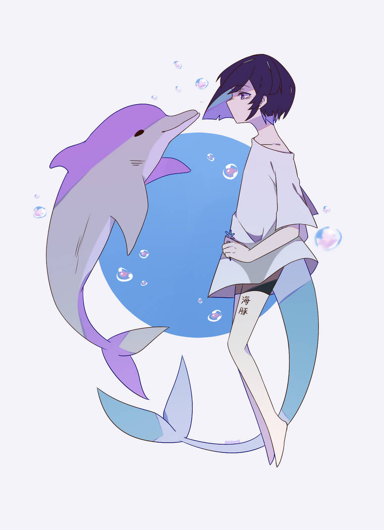 Dolphin by melkeshiro