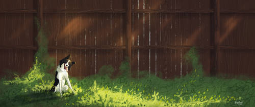 Backyard Study by meghanart