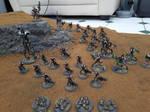 project necrons - indomitus