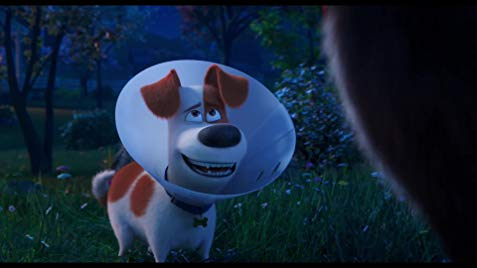 Watch The Secret Life Of Pets 2 2019 Full Movie By Nisilovo On