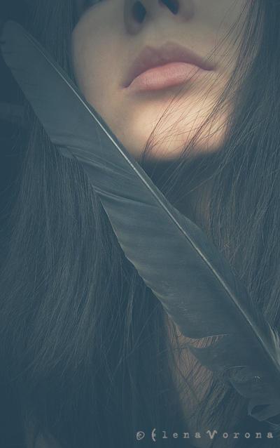 StyxCornix's Profile Picture