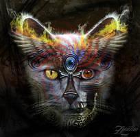 3rd Eye Kosmo