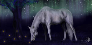 Commission: Night grazing