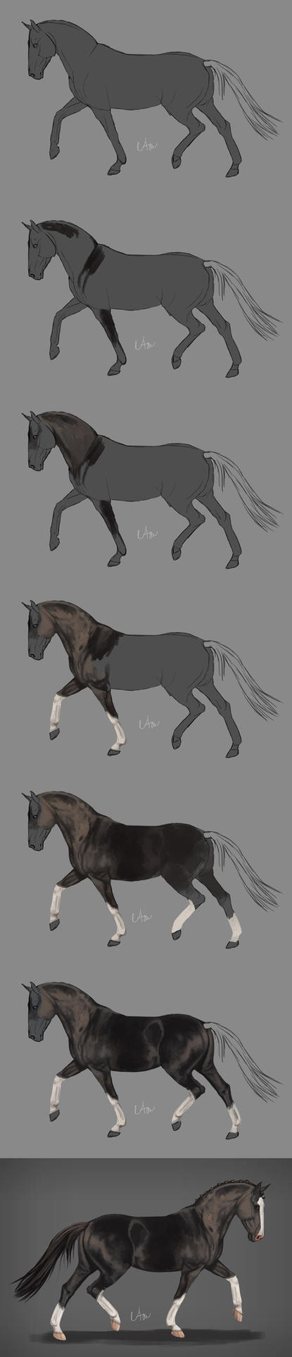-= Step by step =- by Naia-Art
