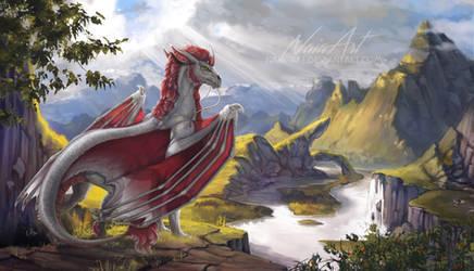 -= Com: Valley of Droggo =-