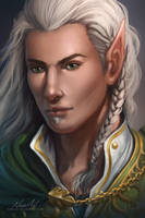 -= Lord Erendriel =- by Naia-Art