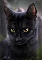 -= Com: Blackie =- by Naia-Art