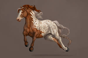 -= Com: Horsey =-