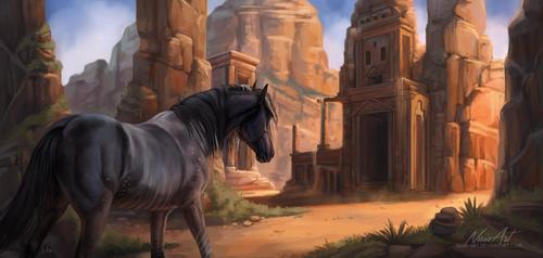 -= Desert wanderer =-