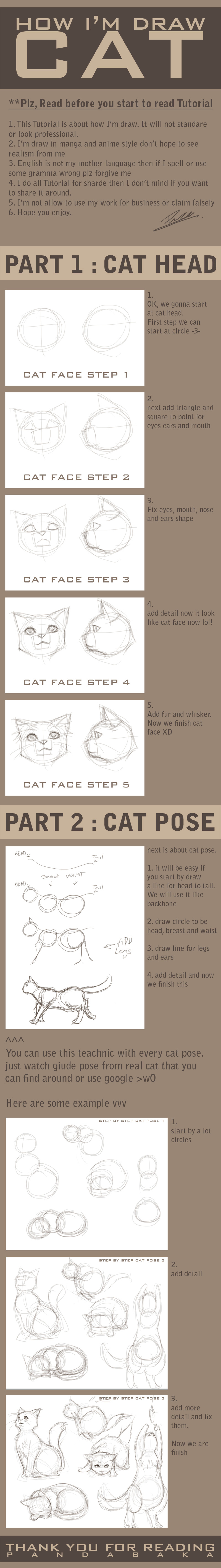 how I am draw cat by pandabaka
