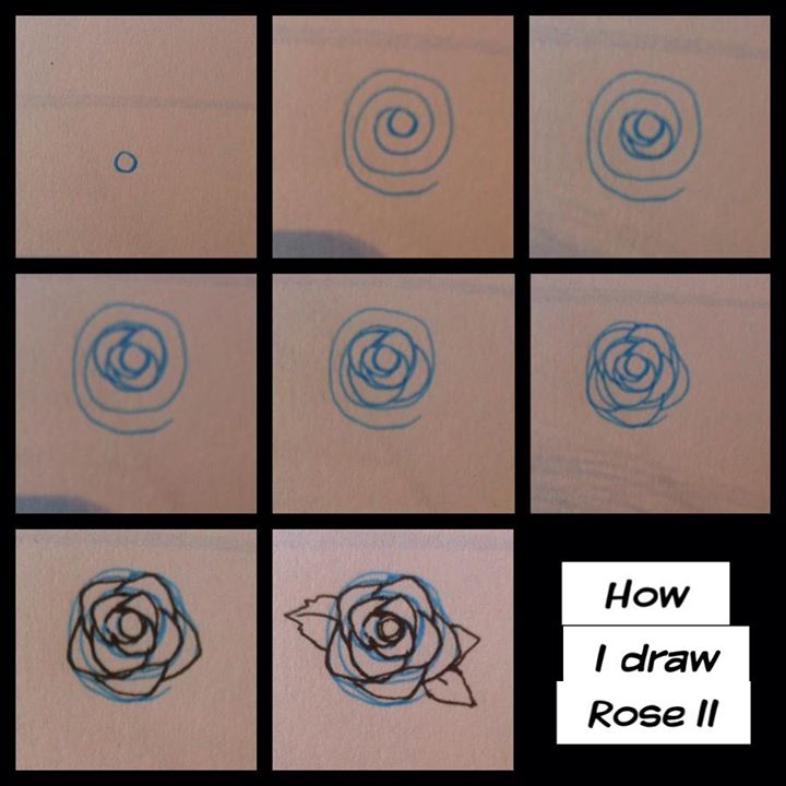 Step how i draw rose ii by pandabaka on deviantart for How to step by step draw a rose