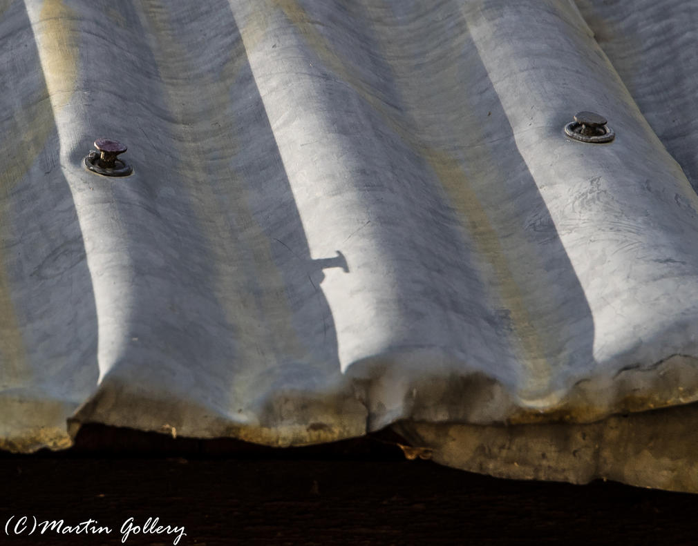 Spooner Lake141014-69 by MartinGollery